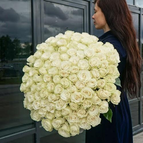 Импортные белые розы