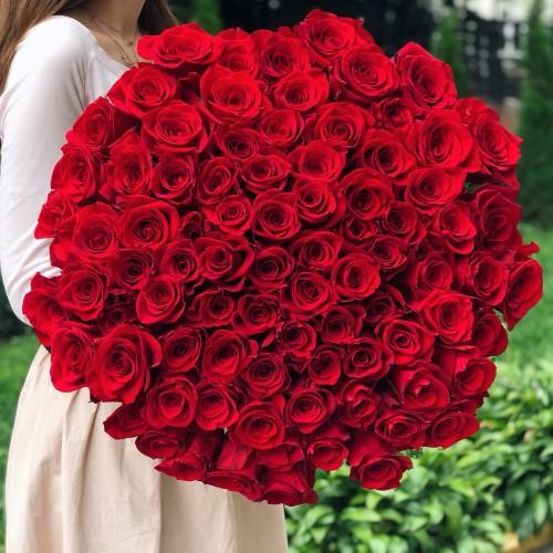 Импортные красные розы