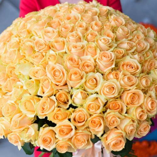 201 персиковая роза
