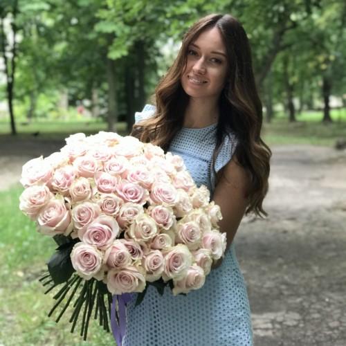 51 импортная роза Sharmant