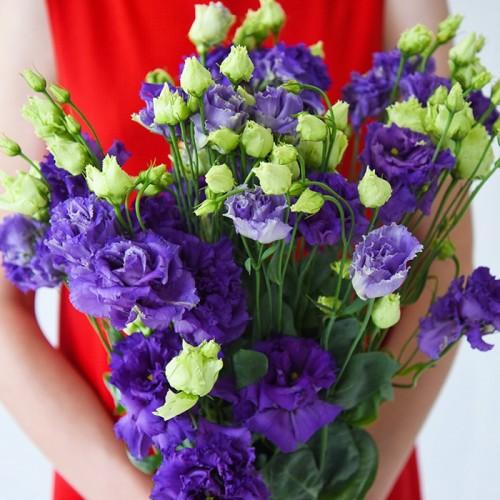 9 фиолетовых эустом