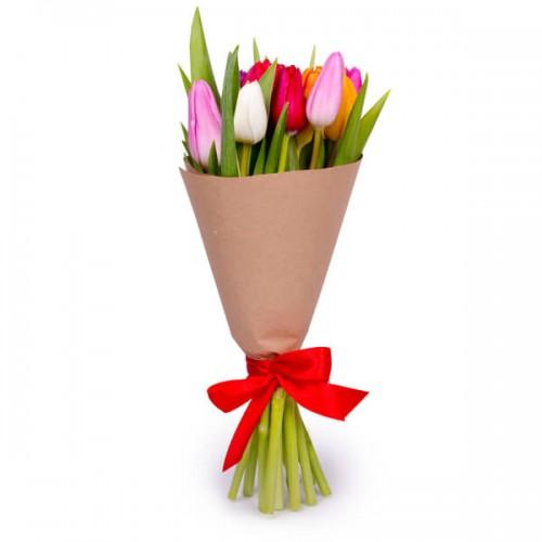 11 тюльпанов микс
