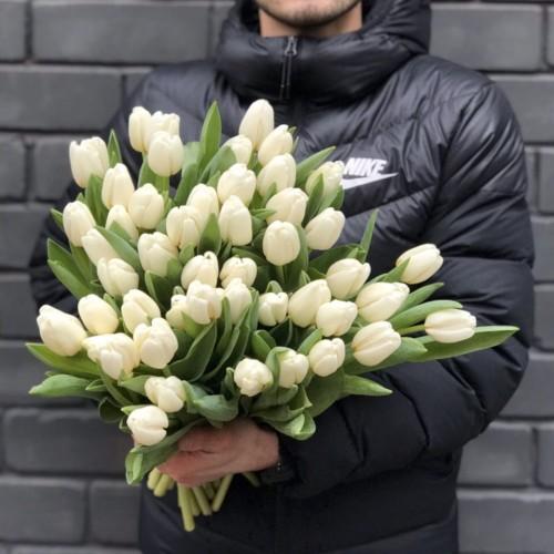 Белые тюльпаны поштучно