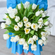 101 белый тюльпан