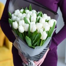 35 белых тюльпанов