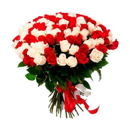 101 красно-белая роза